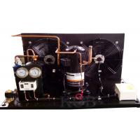 ZB38KQE-TFD Commercial Condensing Unit , Condensing Unit Components Scroll Compressor Low Temperature Manufactures
