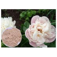 Peony Root Powder Natural Anti Inflammatory Supplements Water Solvent CAS 23180 57 6 Manufactures