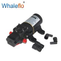 Whaleflo 35psi 12 Volt RV Electric Marine Sea Water Pump 4.3LPM For Sale Manufactures