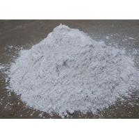 Exterior Plaster Wall Filler Putty Super Adhesion Flexible For Powder Coating Manufactures