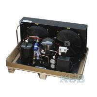 Tag4561Z 5HP Low Temperature Condensing Unit Suitable For Different Refrigerator Long Lifespan Manufactures