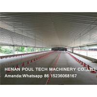 Poultry Farming Chicken Supplies Automatic Broiler Slatted Floor System & Broiler Deep Litter System in Chicken House Manufactures
