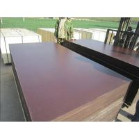 Film Faced Plywood, Structure Plywood, Concrete Plywood Manufactures