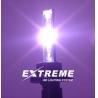 HID Xenon Sepcial Colour Bulb Manufactures