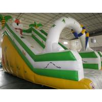2014 New Inflatable Water Slide for Water Park Manufactures