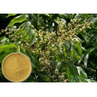 Soapnut Saponin Cosmetic Raw Materials Soapberry Extract For Whitening Spot Manufactures