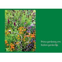 Decorative Mental Garden Plant Stakes / Garden Support Stakes With 3 Spiral Stem Manufactures