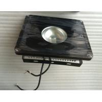 Bridgelux chip Meanwell Driver Outdoor LED Floodlights IP65 Manufactures