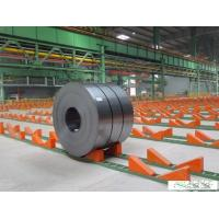 Quality Prepainted Galvanised Steel Coil , Cold Rolled Steel Sheet In Coil for sale