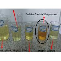 Legal Muscle Building Steroids , Trenbolone Enanthate 200 Mg/Ml For Cutting Cycles Manufactures
