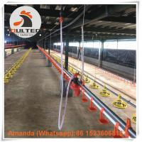 Poultry Farm Hot Galvanized Chicken Broiler Floor Raising System with Drinker Line & Feeding Pan System in Chicken Shed Manufactures