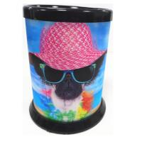 3D Lenticular Printing Service / Plastic Pencil Holder for School and office Manufactures