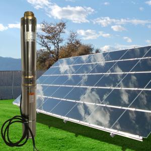 China Whaleflo Farmland Irrigation Solar Pump 180W 5ton/Hour Solar DC Irrigation Water Pump Sand Resistant on sale