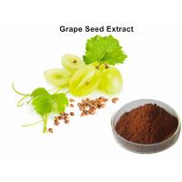 Quality Healthy Care Grapeseed Extract 95% Polyphenols, Anti - Oxidant Grapeseed Oil Extract  For Skin for sale