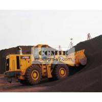 Cummins Engin Wet Travel Brake Compact Track Loader Rental 6.5 m³ Bucket capacity Manufactures