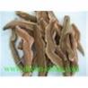 Reishi slice Manufactures