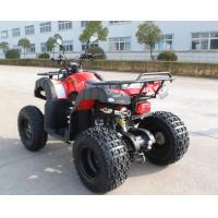 Farm 200CC Engine EEC ATV Petrol Red Utility With Four Wheels Manufactures