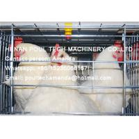 Quality Silver Hot Galvanized Steel Cage Battery Cage Layer Breeding Chicken Cage Coop & for sale