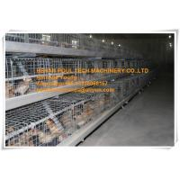 Quality Chicken House Steel Sheet Silver White Automatic Small Chicken Cage for Chicken Shed with Feeding&Drinking System for sale