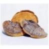 Dried Phellinus igniarius Manufactures