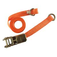 CE Strap Ratchet Straps 1 Inch 1000KGS Lashing Strap Ratchet Tie-Down Straps with D-ring Manufactures