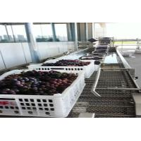 Grape Fruit Tea Bottling Equipment Automatic 3 In1 Juice Filling Machine Manufactures