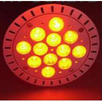 Warm white color spotlight LED PAR38 Manufactures
