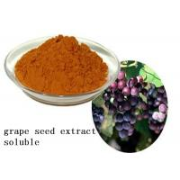 Heart Health Natural Plant Extracts Proanthocyanidins OPC Soluble Grape Seed Manufactures