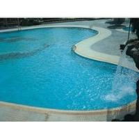 Swimming Pool Cement Waterproofer Manufactures