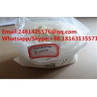 China Safe Muscle Growth Steroids Tren Acetate / Trenbolone Acetate Powder CAS 10161-34-9 on sale