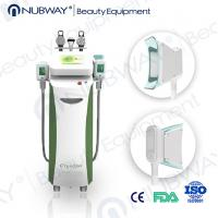 China Get rid of stubborn fat 2015 fat freezing cryolipolysis machine on sale