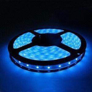 Long life span 50000 hours 300 leds / 5 Meter Blue 3528 led flexible strip lights Manufactures