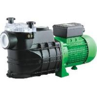 China FCP Swimming Pool Filter Pumps on sale