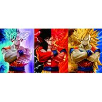Buy cheap 30*40cm 0.6mm PET 3D Poster Custom Dragon Ball 3D Lenticular Poster from wholesalers