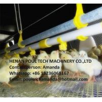 Poultry Farming Steel Automatic Broiler Deep Litter System with Feeding Pan System & Drinking System in Broiler House Manufactures