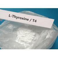 CAS 51-48-9 Oral Injectable Anabolic Steroid White Powder T4 / L-Thyroxine For treating hypothyroidism Manufactures