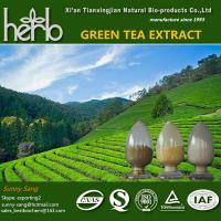 China Green tea extract Tea polyphenol, EGCG, Catechins, on sale