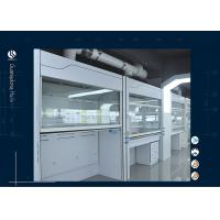 China Physics Floor Stand Laboratory Walk In Fume Hood Heavy Duty Air Flow on sale