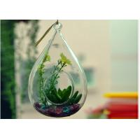 Hanging Teardrop Glass Terrarium , Hanging Glass Teardrop Candle Holders Manufactures