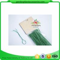 Green Tree Climbing Garden Plant Ties , Plastic Tree Support Ties Manufactures