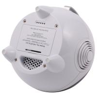 Wireless Portable Bluetooth Speaker With FM Stereo Radio And Infrared Remote Control Manufactures