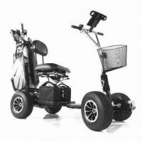 800W/110Ah Electric Mini Sport Golf Cart with 85mm Ground Clearance Manufactures