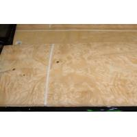 Yellow Ash Burl Wood Veneer For Furniture , 0.5 mm Thickness Manufactures