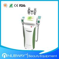 cryolipolysis machine/Cryolipolysis slimming machine with optional lipo laser pads Manufactures