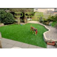 10500 Dtex Commercial Artificial Putting Green Turf 9800 Dtex Easy Care Manufactures