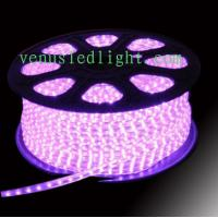 Blue color 100m/roll LED 2 wires round rope light pink purple colors  Manufactures