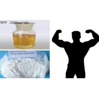 Burning Fat Nandrolone Steroids / NPP Durabolin Nandrolone Phenylpropionate CAS 62-90-8 Manufactures