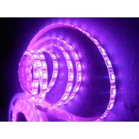 China 5400LM Outdoor Purple SMD 5050 3M LED Strip Tape 12 Volt for Home , Hotel on sale