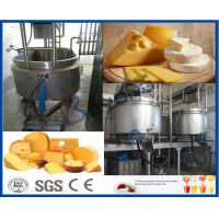 Pasteurized SUS316 Dairy Cheese Making Machine Sanitary Manufactures