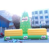 Green Inflatable Rock Climbing Wall Outdoor , Blow Up Rock Climbing Wall Manufactures